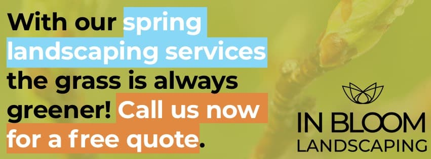 Spring Toronto Landscaping Services