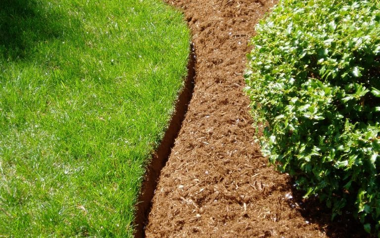 Toronto Summer Landscaping Services - Edging