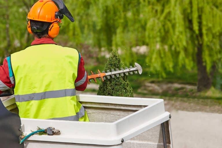 Toronto Summer Landscaping - Pruning