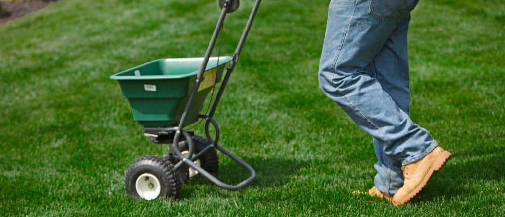 Spring Grass Seed Application