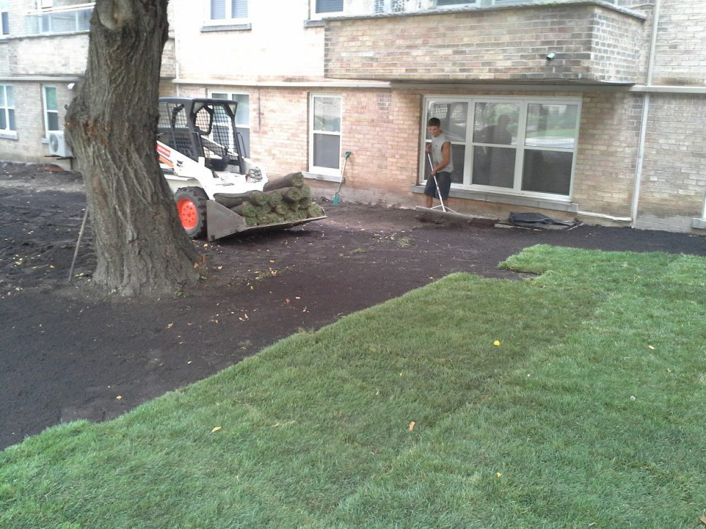 Commercial Sod Install